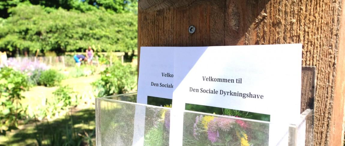 Den sociale dyrkningshave